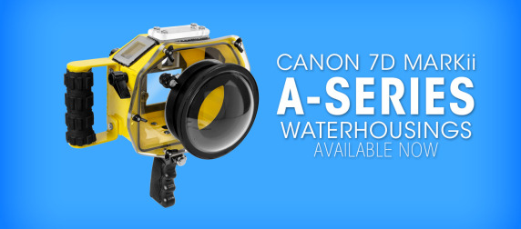 spl-water-housings-canon-7d-markii-waterhousing