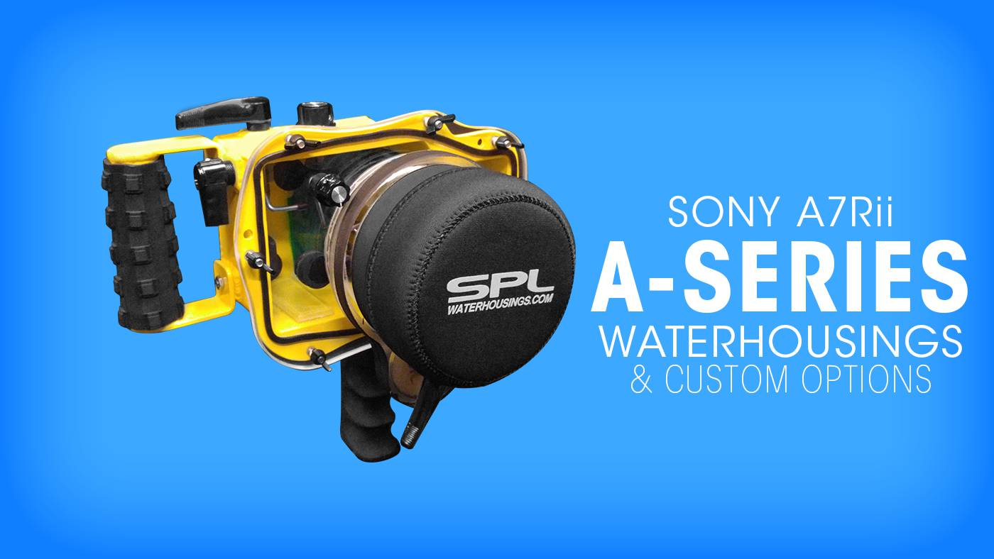 spl-water-housings-sony-a7rii-photography-home-1400